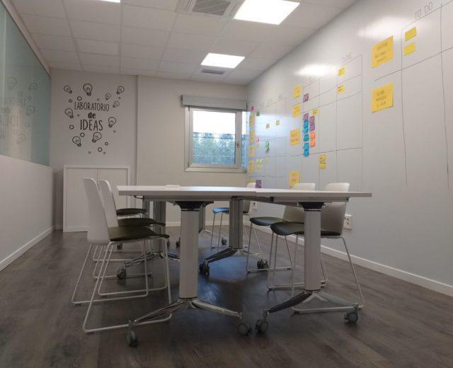 startups rotobasque mentoring